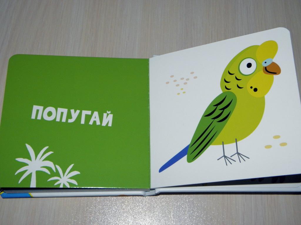 Книга Мои первые слова