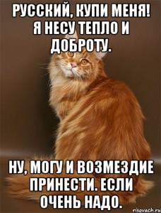 russkiy-kupi-menya-ya-nesu-teplo-i_64996050_orig_